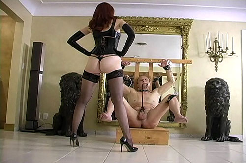 Need make Cock ball bdsm tube and